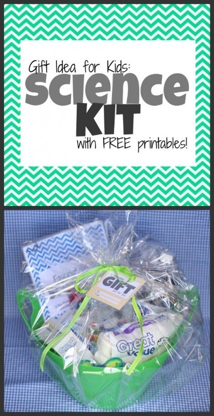 Gift Idea: Science Kit for Kids (with free printables) - I Can Teach My Child! | Christmas Gifts | Scoop.it