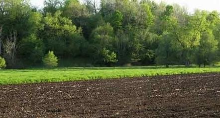 Cargill s'attaque à la Chine en investissant en Ukraine | agro-media.fr | Actu Boulangerie Patisserie Restauration Traiteur | Scoop.it