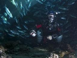Underwater Cartographer Charted Florida's Pristine Silver Springs | Undersea Exploration | Scoop.it