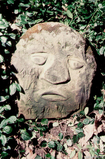 Das Rätsel um die Burrows-Höhle | Nervenfutter | Scoop.it