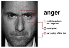 Micro Expressions - Research, Theory & Lying | Human Behaviour, Forensic Psychology | Blifaloo.com | Microexpressions | Scoop.it
