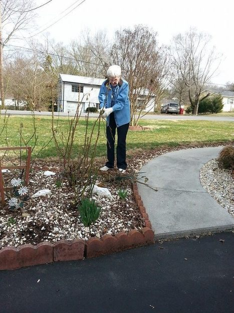 Bloom Thyme Friday: Nell's Story ... A Lifetime of Love and Roses | Cottage Gardening | Scoop.it