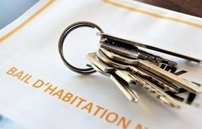Pourquoi votre loyer pourrait (légèrement) baisser cette année | Immobilier | Scoop.it
