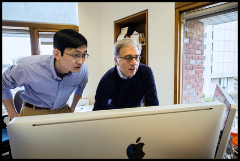 Diabetes treatment discovery by Harvard scientists Douglas Melton and Peng Yi   Harvard Magazine   Stem Cells & Tissue Engineering   Scoop.it