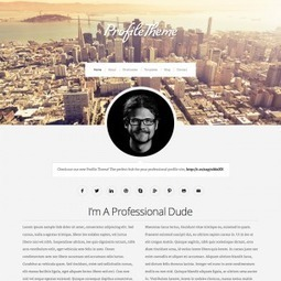 Profile. Un CV au format WordPress | Geeks | Scoop.it