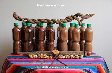 Ayahuasca DMT Buy | Ayahuasca  アヤワスカ | Scoop.it