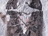 Así copulaban los insectos en el Jurásico   4º de ESO. Bloque 3: La evolución de la vida   Scoop.it