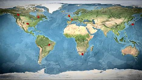 L'Esprit Sorcier - Etre humain, discriminations, races et racisme | Enseigner l'Histoire-Géographie | Scoop.it