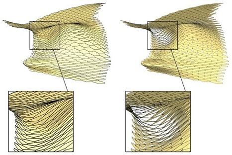 arcode: Fabrication Oriented Parametrics | Computational Design | Scoop.it