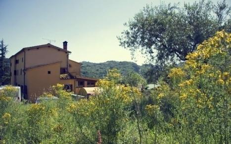 @Legambiente: #Vacanze sempre più green, #turismo ecologico | ALBERTO CORRERA - QUADRI E DIRIGENTI TURISMO IN ITALIA | Scoop.it