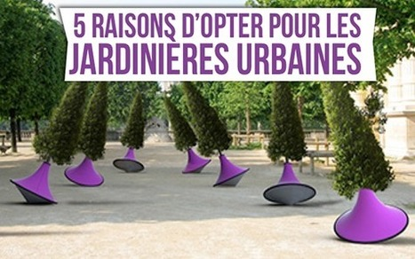 5 raisons d'opter pour les jardinières urbaines | Mobilier urbain | Scoop.it