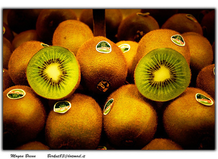 Over 9 Kiwi Fruit Benefits – Boosting the Immune System, Vision, and Heart Health | Global Insights | Scoop.it