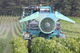 Trop de pesticides dans le vignoble champenois - L'Est Eclair | pesticides : un vrai cancer social ? | Scoop.it