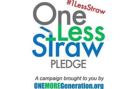 'One Less Straw' campaign wants you to avoid straws during October | Environmental issues | Scoop.it