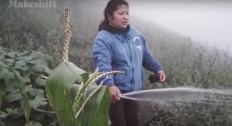 Peruvian farmers harvest water from fog | The Barley Mow | Scoop.it