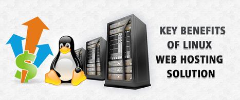 Key Benefits Of Linux Web Hosting Solution | Alpha VBox Blog | linux virtual private server | Scoop.it