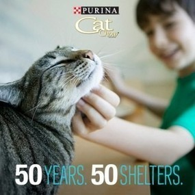 "Western PA Humane Society selected in ""50 Years, 50 Shelters"" program 