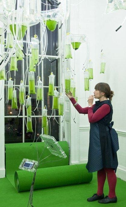 "Tweetable, Interactive Algae Farm is Energy-Generating ""Cyber-Garden"" (Photos) | Restorative Developments | Scoop.it"