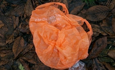 'Fantastic News': England's Plastic Bag Usage Drops By 85% | Care2 Causes | The EcoPlum Daily | Scoop.it