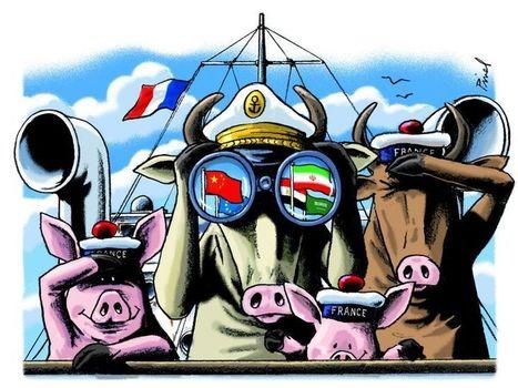 Les viandes françaises mettent le cap à l'export   Boucher Information Communication Boucherie Nationale et Internationale   Scoop.it