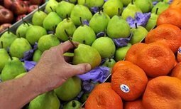 Scurvy cases reported in Australia reveal modern diet failings | Healthy lifestyle | Scoop.it