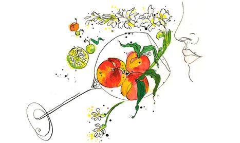 Contribution des glycosides à l'arôme en bouche du vin | vin et vinification, dernières avancées | Scoop.it