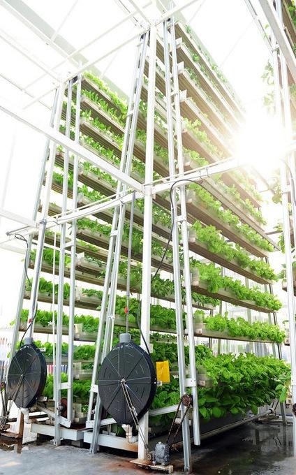 Singapore's Vertical Farms | Amusing Planet | Food & Farming | Scoop.it