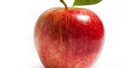 Une extension Internet Apple, pour quoi faire? - Le Huffington Post | Communication et réseaux | Scoop.it