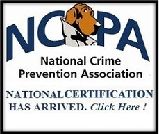 Violent Crime and Personal Safety — National Crime Prevention Council | Personal Protection | Scoop.it