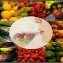 Giấy phép công bố thực phẩm chức năng   Minh Việt   Scoop.it