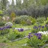Horticulture et paysage