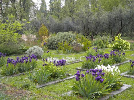 Apprentissage : des actions pédagogiques | Horticulture et paysage | Scoop.it