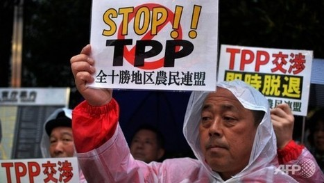 TPP protests intensify ahead of Obama's Japan visit - Channel NewsAsia | AUSTERITY & OPPRESSION SUPPORTERS  VS THE PROGRESSION Of The REST OF US | Scoop.it