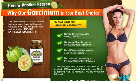 Garcinium Facts   Weight Loss   Scoop.it