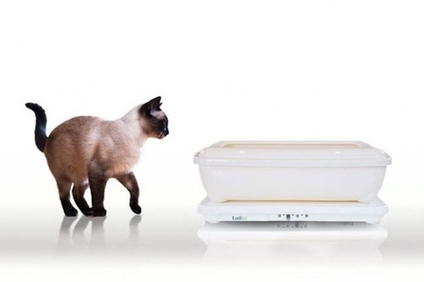 Tailio turns your cat's litter box into a health monitor, sees if cats can predict earthquakes | wearable and moving marketing | Scoop.it
