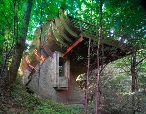 La maison organique, l'aboutissement ultime de l'éco-construction ? | construction durable | Scoop.it
