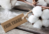 What does fair trade mean? | Global Challenges | Scoop.it