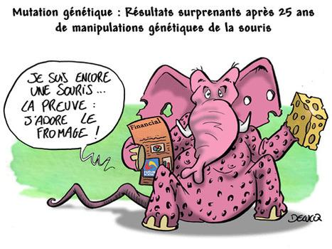En Haute-Garonne, des anti-OGM empêchés de détruire du colza Clearfield - Sciences et Avenir | Abeilles, intoxications et informations | Scoop.it