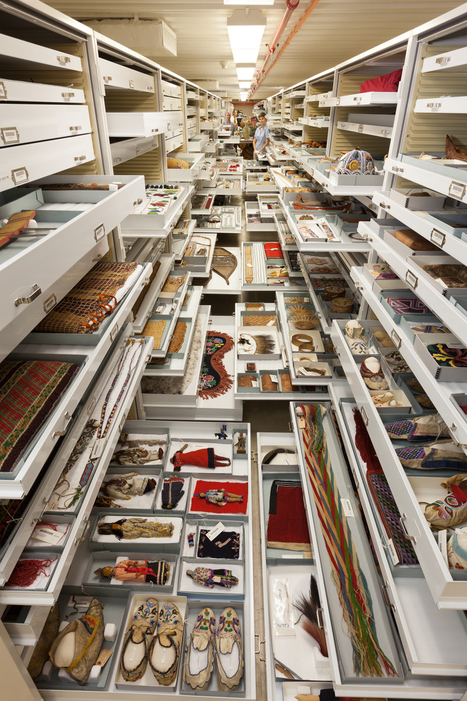 Inside the Secret Collections Backstage at the US Museum of Natural History | DiverSync | Scoop.it