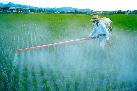 New US Patents Could Signal The End Of Pesticides & GMOs | Health Supreme | Scoop.it