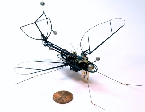 Harvard Launches Robot Moth | Heron | Scoop.it