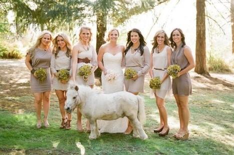 Dude Ranch Weddings: A Do! | Colorado Dude Ranch Vacations | Western Weddings | Scoop.it