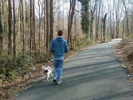 ¡Confirmado! Caminar en la naturaleza previene y cura la depresión   ¿Por qué somos como somos?   Scoop.it