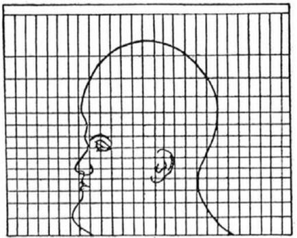 Una cabeza para mostrar cómo los mapas distorsionan la realidad | Geografía secundaria | Scoop.it