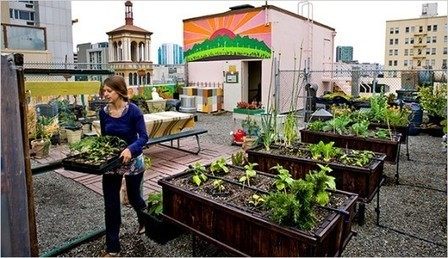 Urban Agriculture Part II: Designing Out the Distance | Arrival Cities | Scoop.it