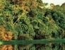 Foz do Iguaçu receberá Fórum Mundial de Meio Ambiente - H2FOZ | Meio ambiente | Scoop.it