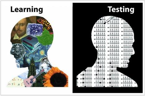 Una prueba no prueba nada ▸ One test proves nothing   Recursos Primaria   Scoop.it