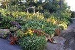 Seeds: Food garden best started in small bites - Sacramento Bee   Vertical Farm - Food Factory   Scoop.it