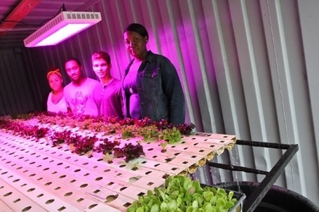 Navy Yard blooms with hydroponic pride | Passyunk Post | Vertical Farm - Food Factory | Scoop.it