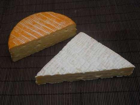Les A.O.P. laitières de Normandie lancent leur nouvelle campagne de communication et de promotion collective 2012 | thevoiceofcheese | Scoop.it